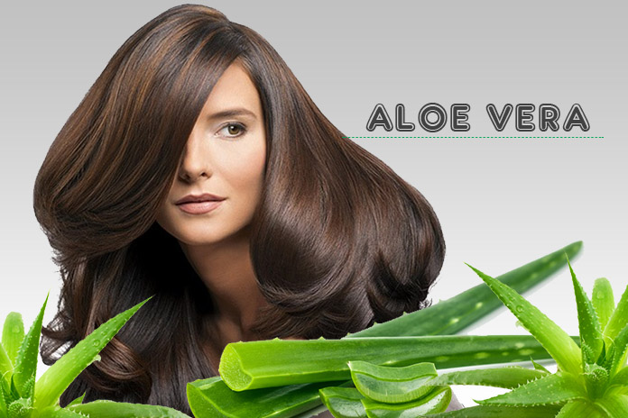 Benefits of Aloe Vera for Wild Hair Growth