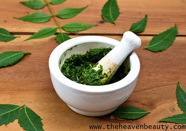 Remove body odour - Neem leaves