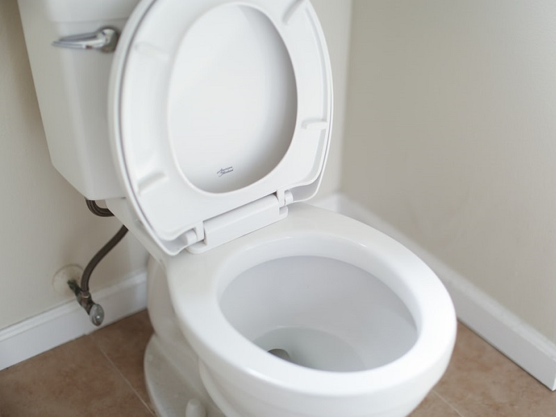 Toilet Seat Sanitizer Spray: Helps Prevent Infections