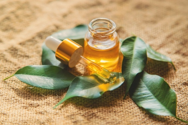 Tea tree oil and Aloe Vera for acne